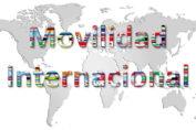 Compañías de mudanzas internacionales