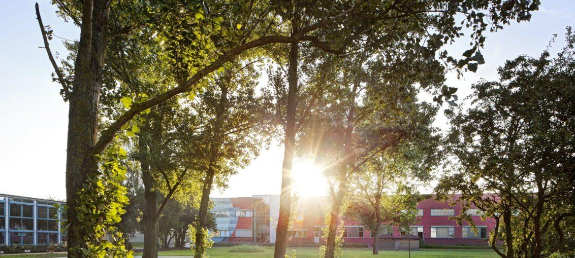 La responsabilidad y la sostenibilidad en el corazón de MEWA